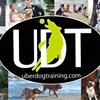 Uberdog Training