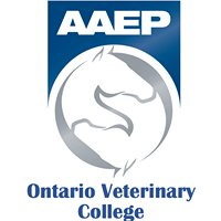 OVC Equine Club: Student Chapter AAEP