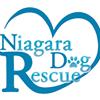 Niagara Dog Rescue