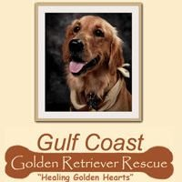 Gulf Coast Golden Retriever Rescue, Inc.