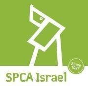 SPCA Israel