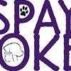 Spay Stokes