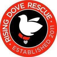 Rising Dove Rescue