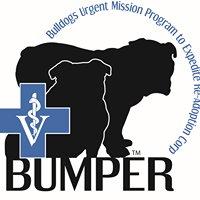 BUMPER Rescue