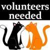 Scratching Post Cat Rescue, Inc.