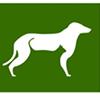 Kokopelli Animal Hospital