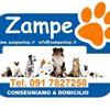 Zampe