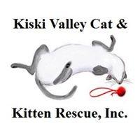 Kiski Valley Cat & Kitten Rescue