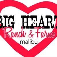 BIG Heart Ranch & Farm