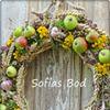 Sofias Bod