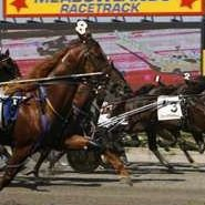 New Meadowlands Racetrack Fan Page