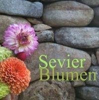 Sevier Blumen