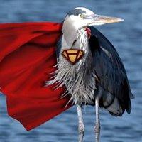 Super Heron Support