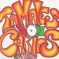 Tamales Don Carlos