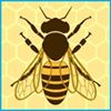 Tennessee Artisan Honey