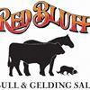 Red Bluff Bull & Gelding Sale