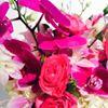 OSHi Floral Design - Nashville