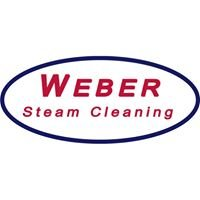 Weber Steam Cleaning