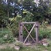 Meadow Garden at Parsippany Presbyterian Church