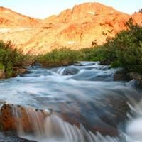 Pacifico's tours of the High Sierras