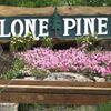 Lone Pine Nursery