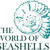 The World Of Seashells