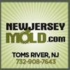 NewJerseyMold.com