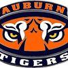 Auburn Tiger Store