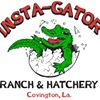 Insta-Gator Ranch & Hatchery