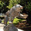 California State University Maritime Academy Alumni Association