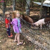 Alive 'n' Pickin' Farm