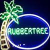 The Rubber Tree - Long Beach, California