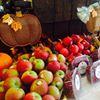 Good Health Natural Foods