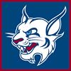 St. Thomas University Athletics