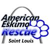 American Eskimo Rescue of St. Louis