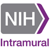 Intramural Research Program at the National Institutes of Health (NIH IRP)