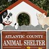 Atlantic County Animal Shelter