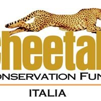 Cheetah Conservation Fund Italia