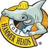 COBT Hammer Heads Program