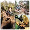 Island Safaris Hunting and Fishing Adventures