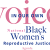 In Our Own Voice: National Black Women's Reproductive Justice Agenda
