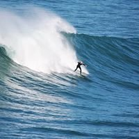 San Diego Surf Check