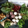 Sunny Slope Farm