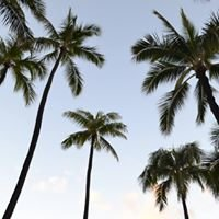 Oahu With Me
