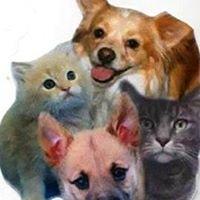 Poteau Valley Humane Society