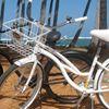 Coconut Coasters Bike Rentals & Repair
