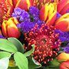 Long Lane Flower & Garden