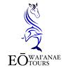 EO Waianae Tours - Dolphin Snorkel Adventure