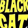 Black Cat Bar