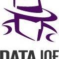 DataJoe, LLC